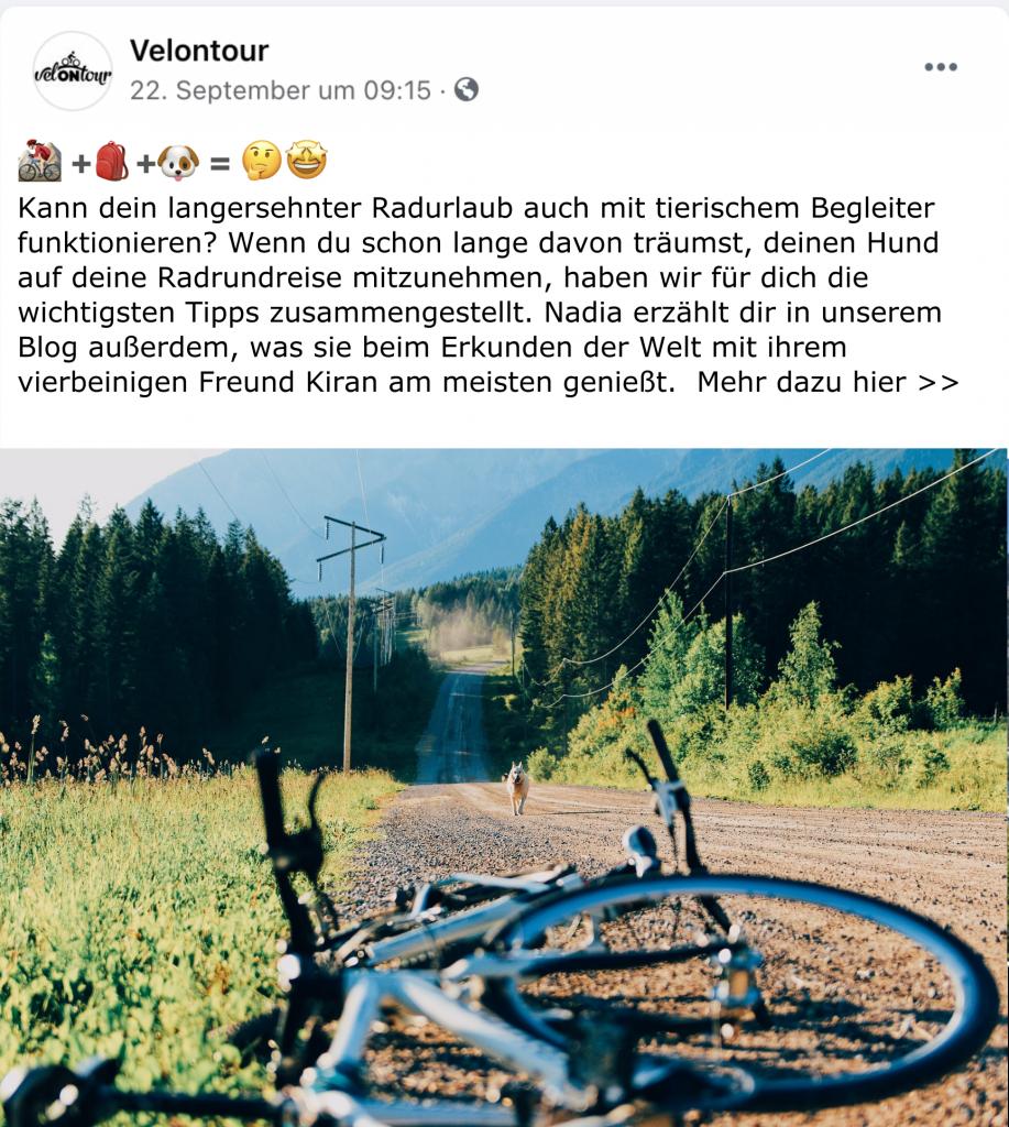 FB Fahrradreise mit Hund