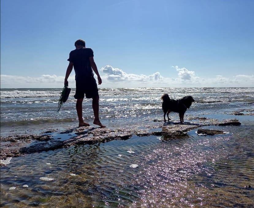 Radurlaub am Meer mit Hund Radurlaub am Meer mit Hund (velo.weit)
